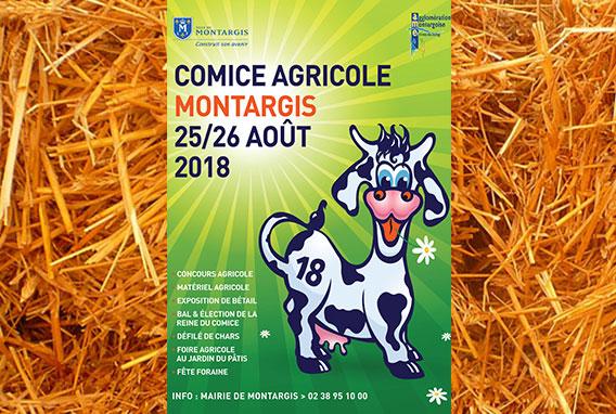botte de paille affiche comice agricole